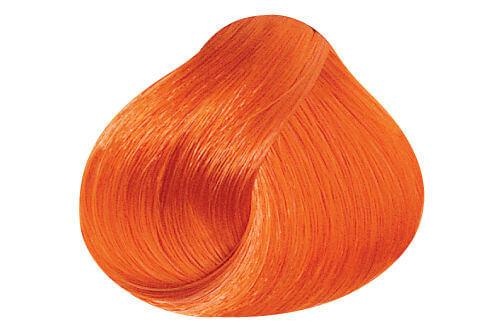 Vivids Orange 1