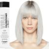Pastel Silver BALSAM cu BondFix 4
